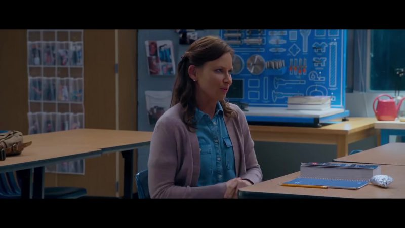 "Grey Cardigan and Blue Chambray Shirt Worn by Mary Lynn Rajskub in ""Night School"" Movie - Female Fashion"