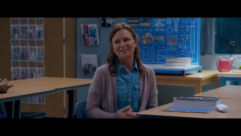 "Grey Cardigan and Blue Chambray Shirt Worn by Mary Lynn Rajskub in ""Night School"" - Movie Outfits and Products"