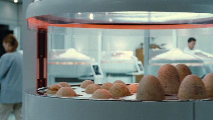 An authentic egg of the dinosaur from the incubator in Jurassic World - Movie Outfits and Products