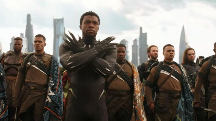 Black Panther Costume worn by T'Challa (Chadwick Boseman) as seen in Avengers : Infinity War