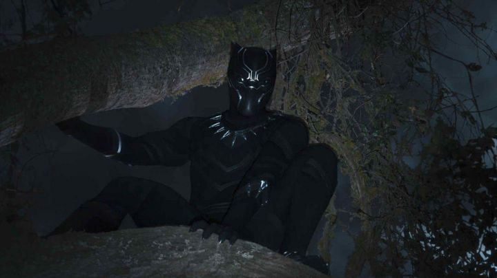 Black Panther Costume worn by T'Challa (Chadwick Boseman) as seen in Black Panther Movie