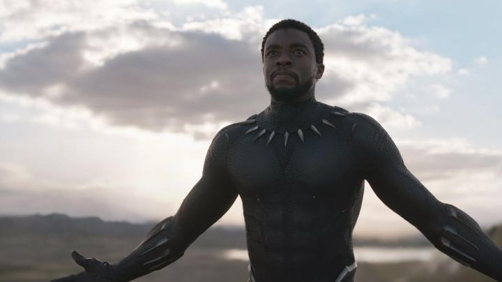Black Panther / T'Challa (Chadwick Boseman) bracers and necklace in Black Panther - Movie Outfits and Products