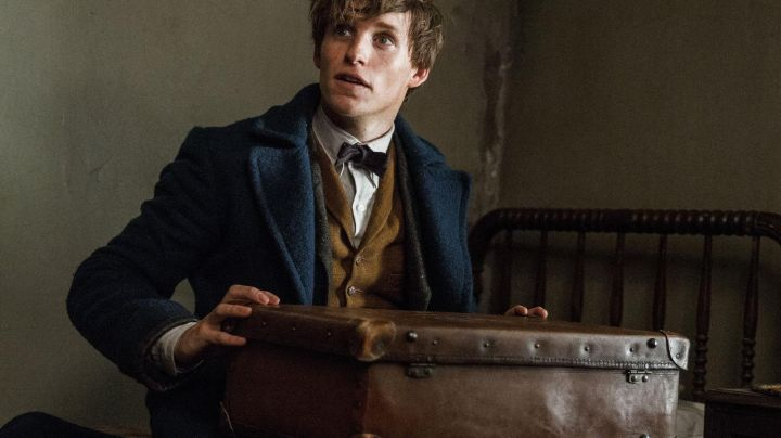 Briefcase of Newt Scamander (Eddie Redmayne) as seen in Fantastic Beasts and Where to Find Them - Movie Outfits and Products