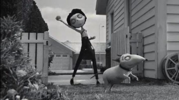 Costume for dog Sparky in the animated film Frankenweenie - Movie Outfits and Products
