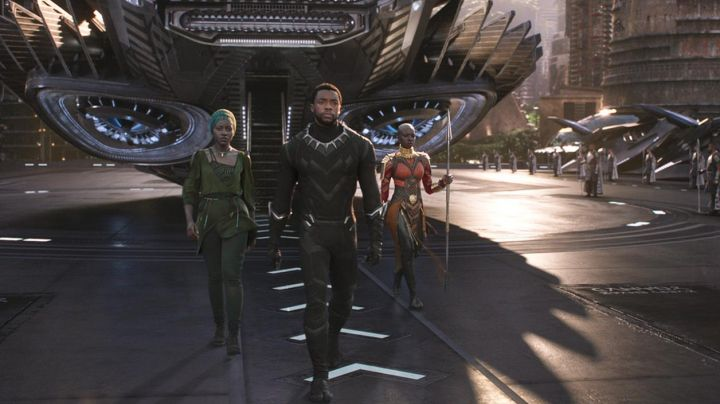 Jacket worn by T'Challa (Chadwick Boseman) as seen in Black Panther - Movie Outfits and Products