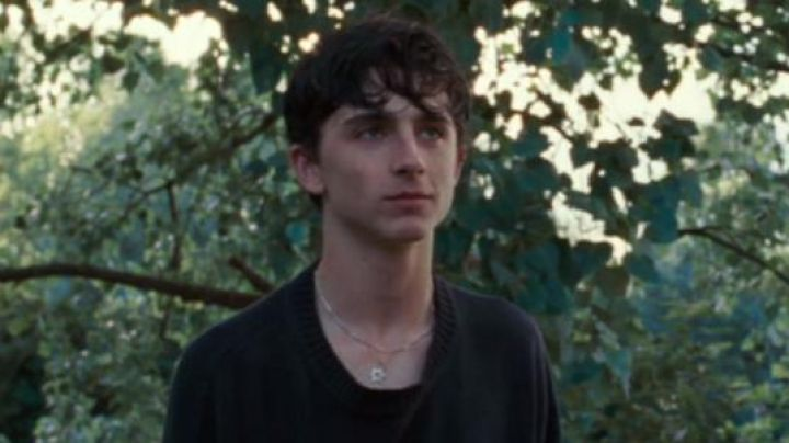 Jumper of vulnerability worn by Elio Perlman (Timothée Chalamet) as seen in Call Me By Your Name movie