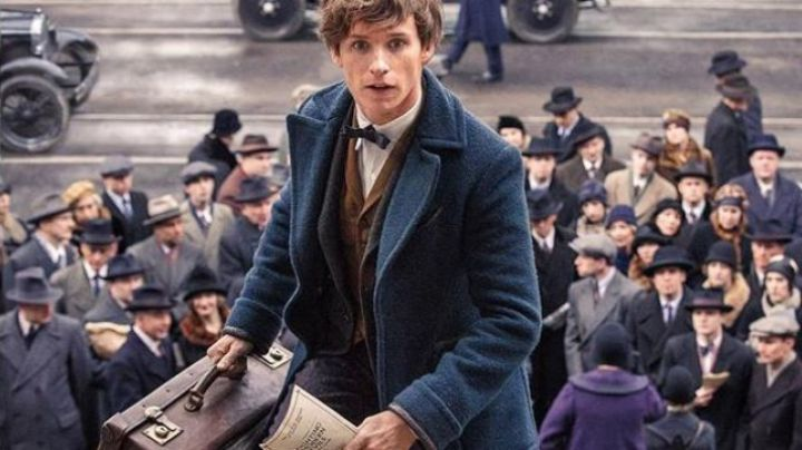 Newt Scamander (Eddie Redmayne) vintage suitcase seen in Fantastic Beasts and Where to Find Them - Movie Outfits and Products
