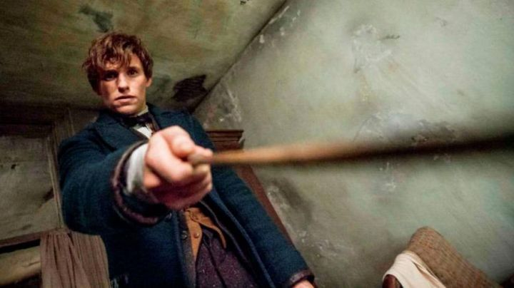 Newt Scamander (Eddie Redmayne) wand seen in Fantastic Beasts and Where to Find Them - Movie Outfits and Products