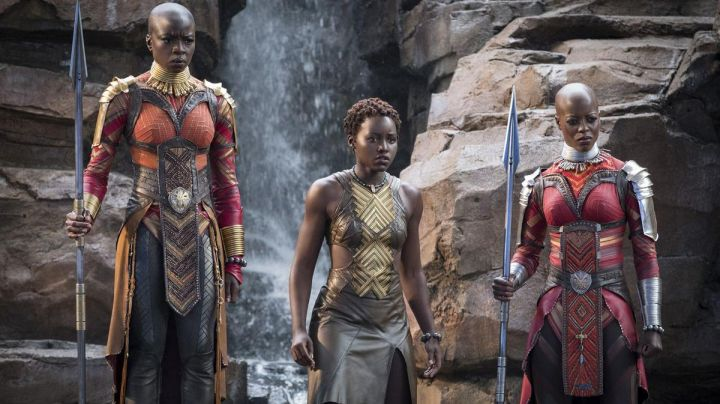 Okoye's (Danai Gurira) bodyguard costume as seen in Black Panther - Movie Outfits and Products