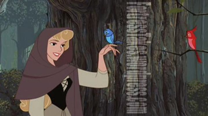 Princess Aurora's peasant costume in Sleeping Beauty - Movie Outfits and Products