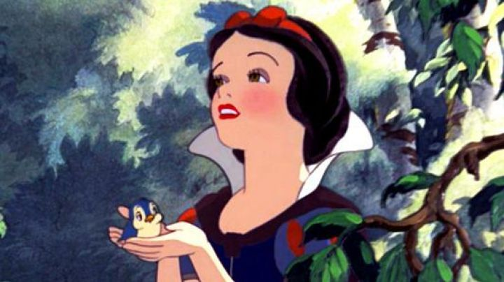 Snow White's brown wig as seen in Snow White and the Seven Dwarfs - Movie Outfits and Products