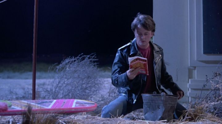 The Almanac of sports found by Marty McFly (Michael J. Fox) in Back to the future 2 movie