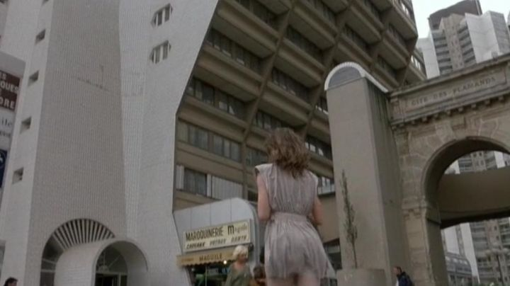 The Door of the Flamingos on the Driveway of the Organs of Flanders to Paris in the film The woman in public - Movie Outfits and Products