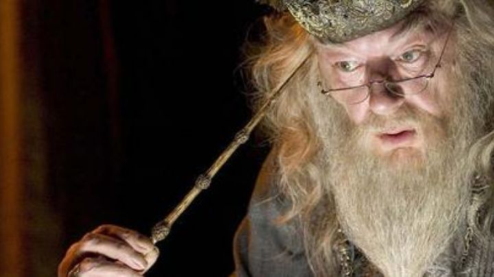 The Wand of Elder from Dumbledore in Harry Potter and the half-Blood prince - Movie Outfits and Products