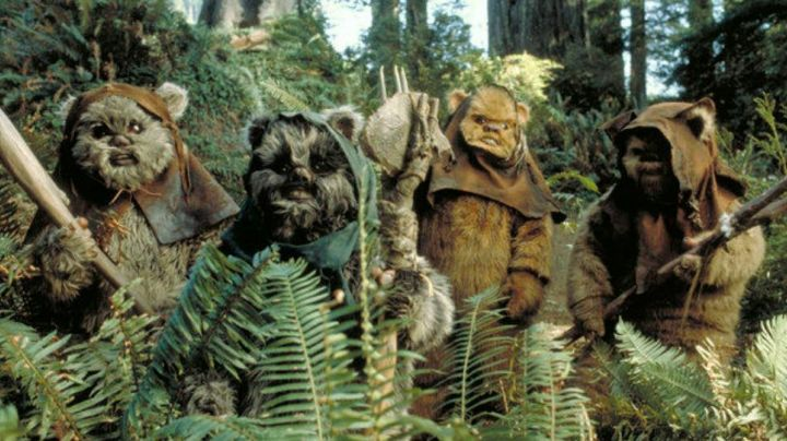 The authentic head Ewok in Star Wars VI : return of The Jedi - Movie Outfits and Products
