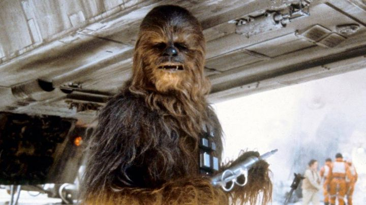 The authentic head of Chewbacca in Star Wars V : The empire against attack - Movie Outfits and Products