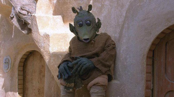 The authentic head of a Rodian from Star Wars I : The phantom menace - Movie Outfits and Products