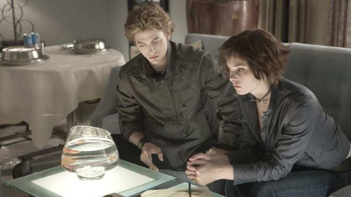 Fashion Trends 2021: The authentic jacket grey Alice Cullen (Ashley Greene ) in the Twilight, chapitre 1 : Fascination