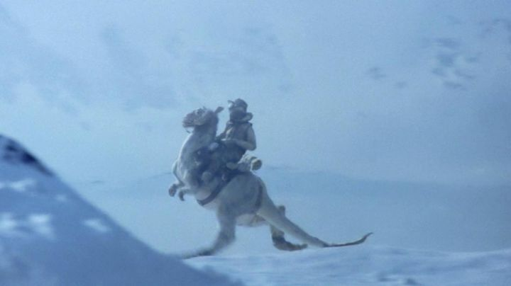 Fashion Trends 2021: The authentic model of the Tauntaun in Star Wars V : The empire against attack