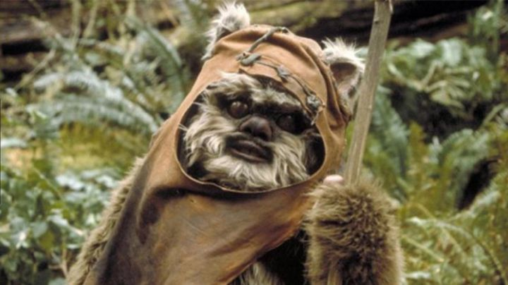 The bonnet / hood of the Ewok in Star wars - Movie Outfits and Products