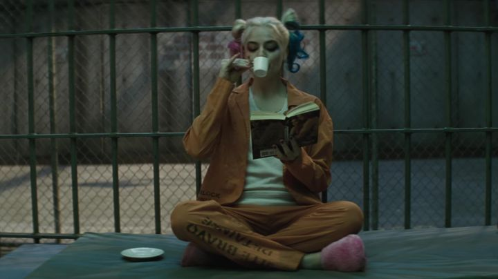 The book read by Harley Quinn (Margot Robbie) while in prison in Suicide Squad movie