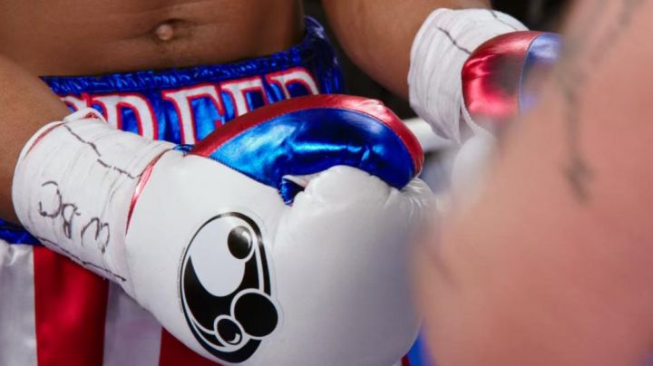 The boxing gloves Grant worn by Adonis Johnson (Michael B. Jordan) in Creed : The legacy of Rocky Balboa movie
