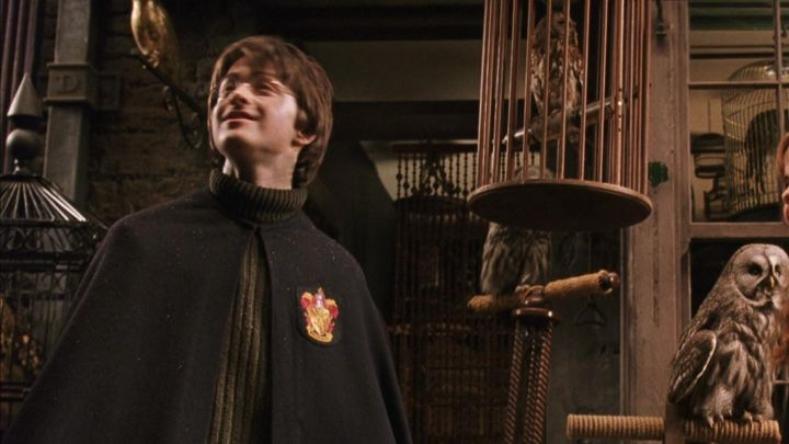 The cloak Gryffindor Harry Potter (Daniel Radcliffe) in Harry Potter and the chamber of secrets - Movie Outfits and Products