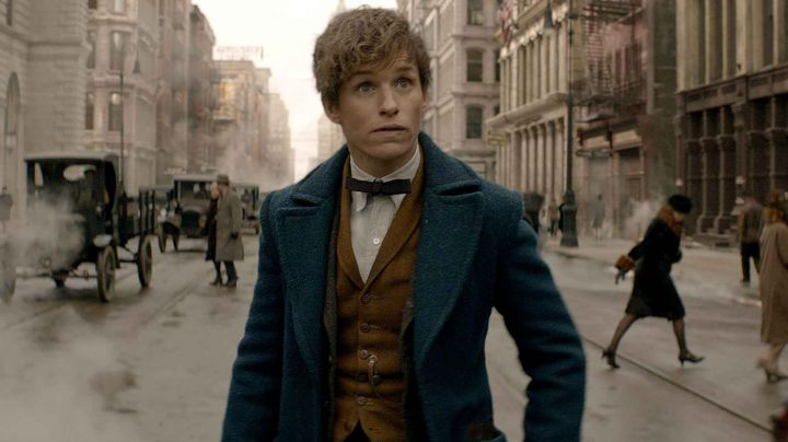 The complete outfit of Newt Scamander (Eddie Redmayne) in Fantastic Animals - Movie Outfits and Products