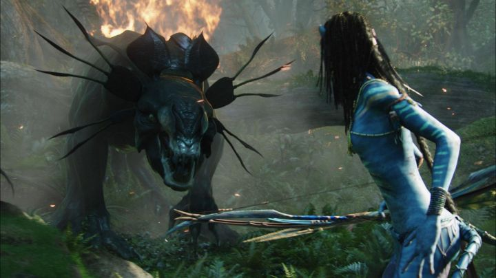 The Costume For Neytiri Zoe Saldana In The Movie Avatar Movie