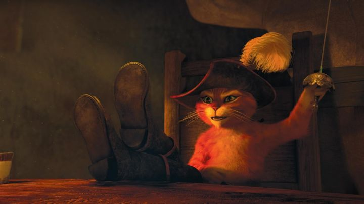 The costume of puss in boots in the animated film puss in boots - Movie Outfits and Products