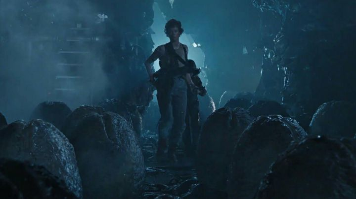 The  eggs Xenomorphe in Alien - Movie Outfits and Products