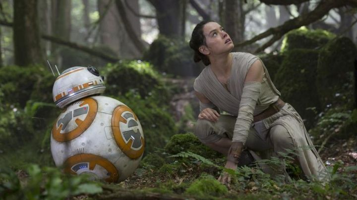 Fashion Trends 2021: The forest of Dean in England which is the setting for the planet Takodana in Star Wars VII : The Awakening of the Force