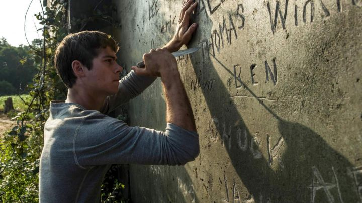 The gray t-shirt of Thomas (Dylan O'brien) in The Maze