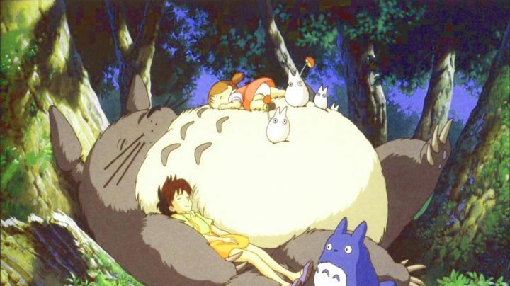 The holding of satsuki in My neighbor Totoro - Movie Outfits and Products