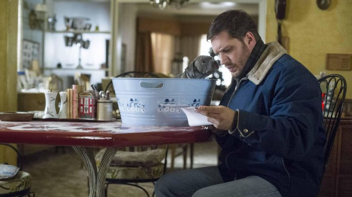 Fashion Trends 2021: The jacket in blue Bob Saginowski (Tom Hardy) in When the night comes (The Drop)