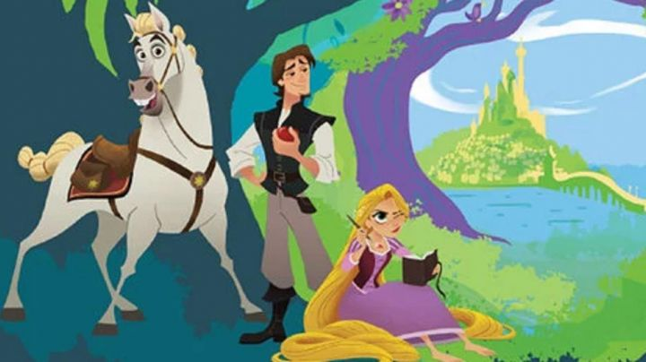 The journal of Rapunzel in Rapunzel : I have a dream series - Movie Outfits and Products