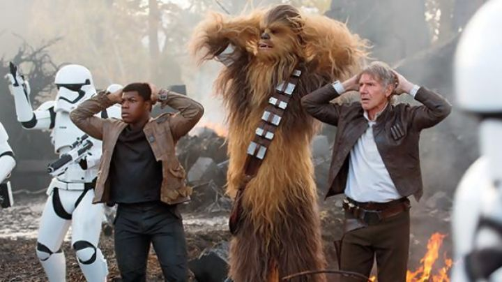 The leather jacket of Han Solo (Harrison Ford) in Star Wars 7 : The awakening of the Force movie