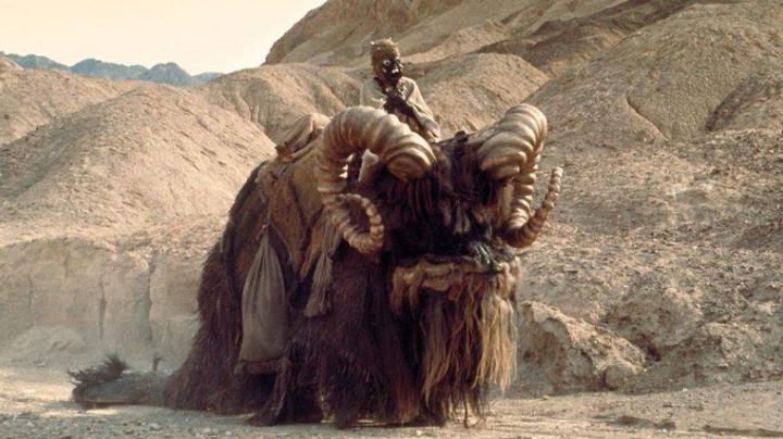 Fashion Trends 2021: The mask of the Man sands in Star Wars IV : A new hope