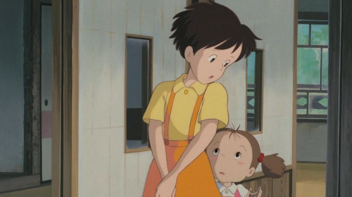 The outfit / cosplay of Satsuki in My neighbor Totoro - Movie Outfits and Products