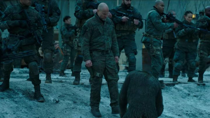 The pants camouflage of the Colonel (Woody Harrelson) in The Planet of the apes : Supremacy