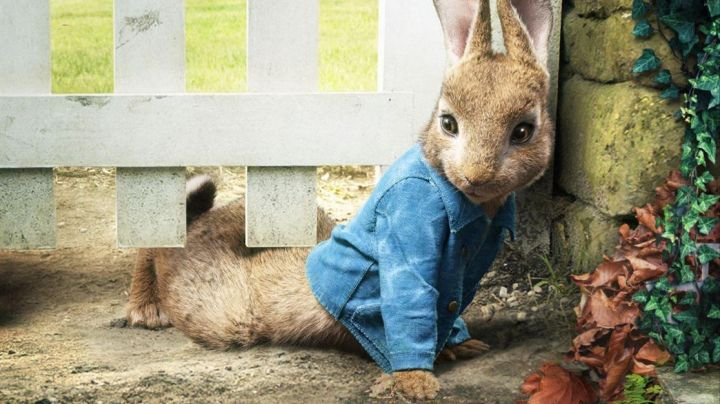 The  plush Peter Rabbit Peter Rabbit - Movie Outfits and Products