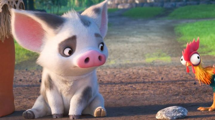The  plush of Pua in Vaiana, the legend of the end of the world - Movie Outfits and Products
