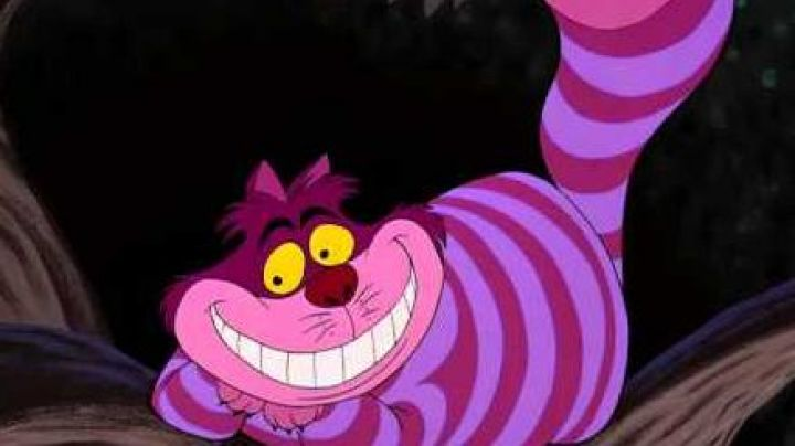 The  plush of the Cheshire cat in Alice in Wonderland - Movie Outfits and Products