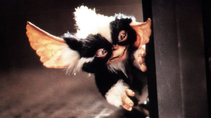 The  plush of the Mohawk, the evil Gremlins in the movie gremlins - Movie Outfits and Products