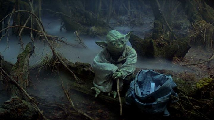 The rod of Master Yoda in Star Wars V : The Empire against attack - Movie Outfits and Products