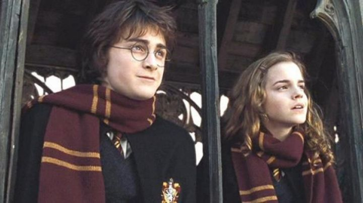 The scarf Gryffindor worn by Harry Potter (Daniel Radcliffe) in Harry Potter and the goblet of fire movie