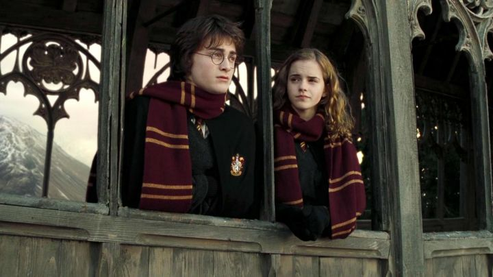 The scarf of the house Gryffindor worn by Harry Potter (Daniel Radcliffe) in Harry Potter and the order of the phenix movie
