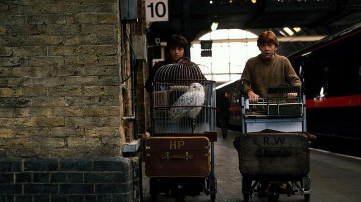 The suitcase of Harry Potter (Daniel Radcliffe) in Harry Potter and the sorcerer's stone - Movie Outfits and Products
