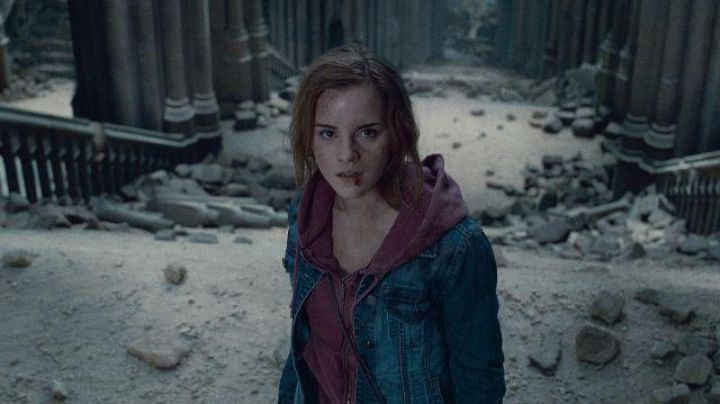 The sweatshirt rose of Hermione Granger (Emma Watson) in Harry Potter 7 Part 2 - Movie Outfits and Products