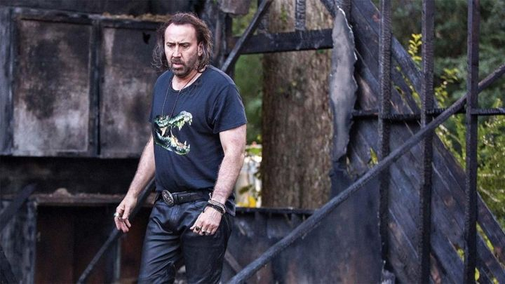 The t-shirt crocodile carried by Joe (Nicolas Cage) in Between Worlds Movie